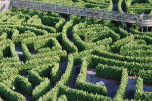 Irrgarten Alfsee, Heckenlabyrinth